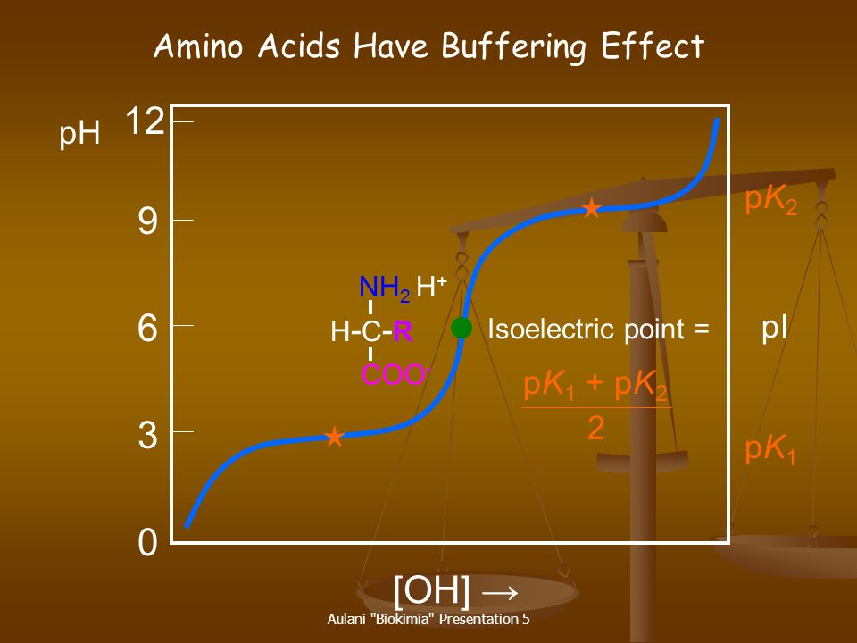 12 9 6 3 [OH] → Amino Acids Have Buffering Effect pH pK2 pI pK1 + pK2